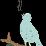 bird-616803_640