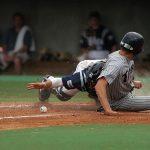 baseball-1393079_640