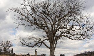 gettysburg-1472361_640