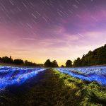 stars-345902_640